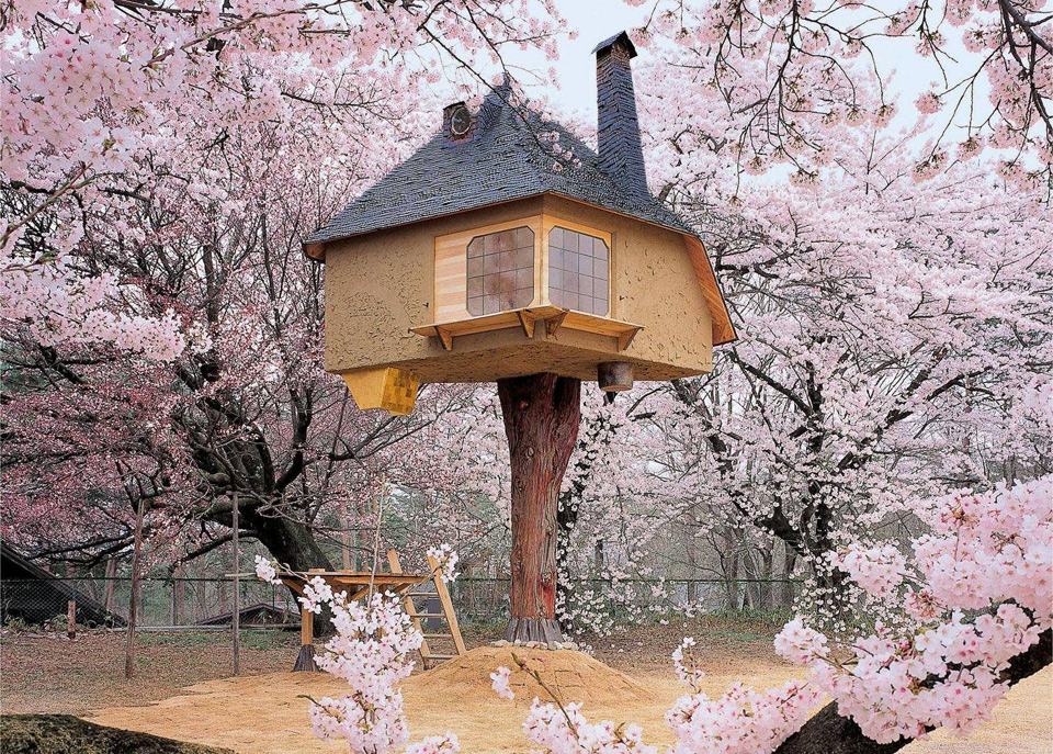 Foto della casa costruita su un albero in Giappone