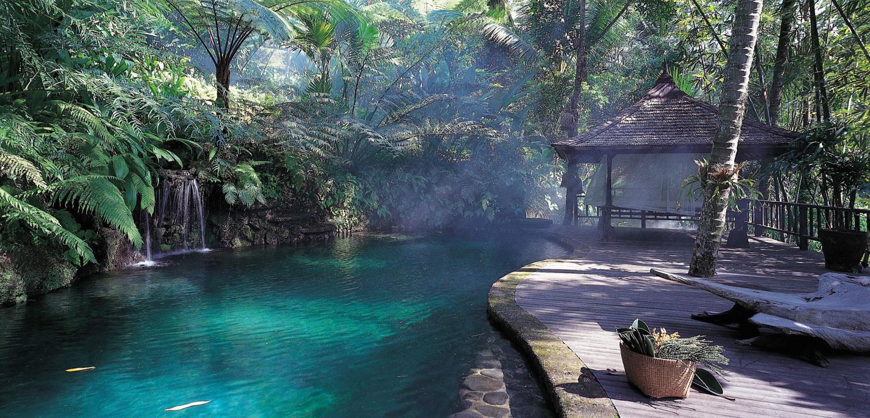 Foto della piscina del resort Como Shambhala Estate a Bali