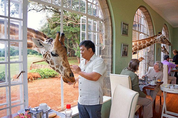 Foto della sala colazione dell'hotel Giraffe Manor in Kenia