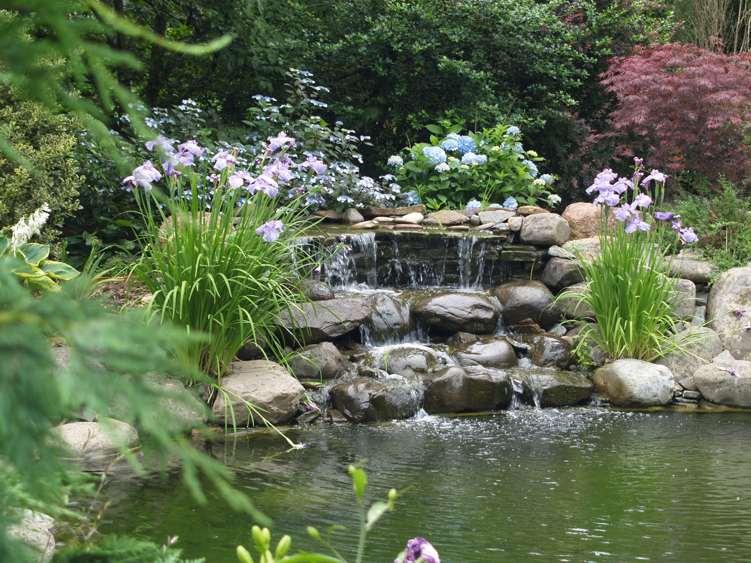 Backyard Ponds Triyaecom Beautiful Backyard Ponds Various Design Inspiration