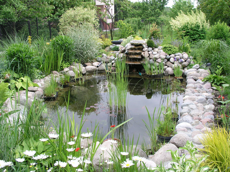 Foto del laghetto da giardino n.03