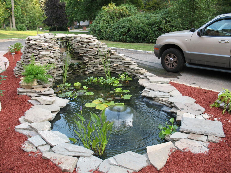 40 foto di bellissimi laghetti da giardino for Piante da laghetto