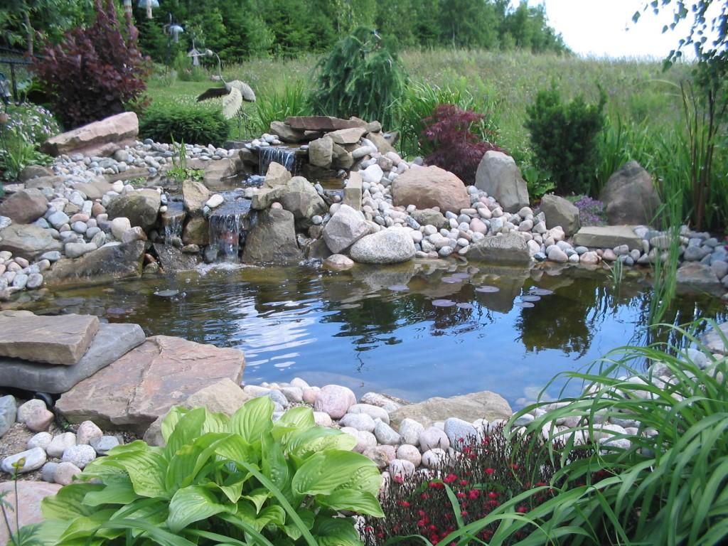 Foto del laghetto da giardino n.07