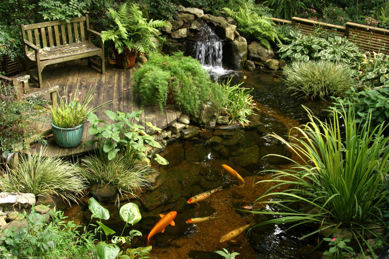 Foto del laghetto da giardino n.09