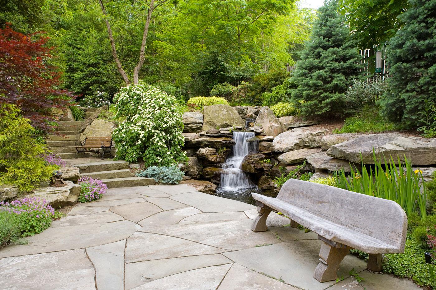 Foto del laghetto da giardino n.11