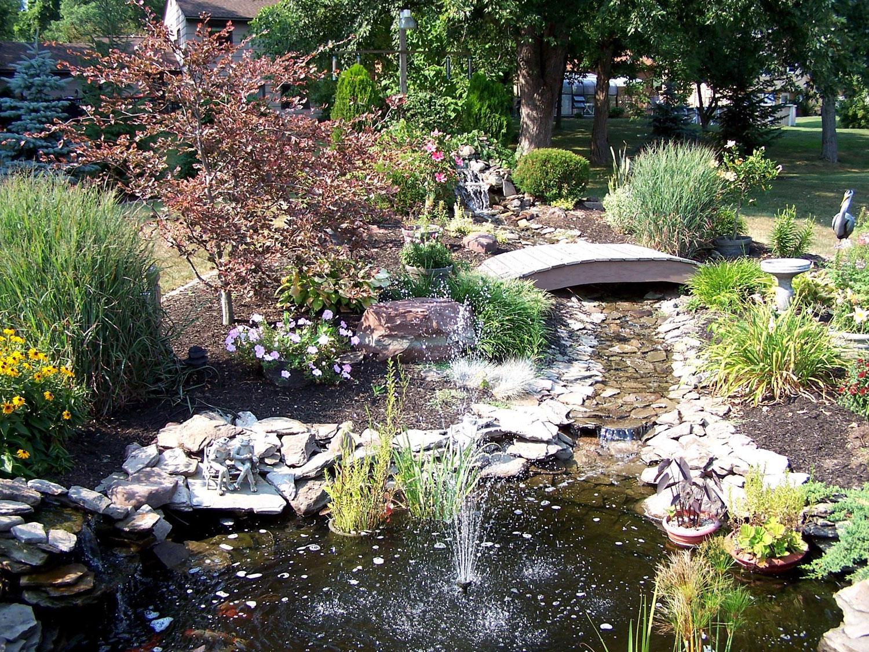 Foto del laghetto da giardino n.14