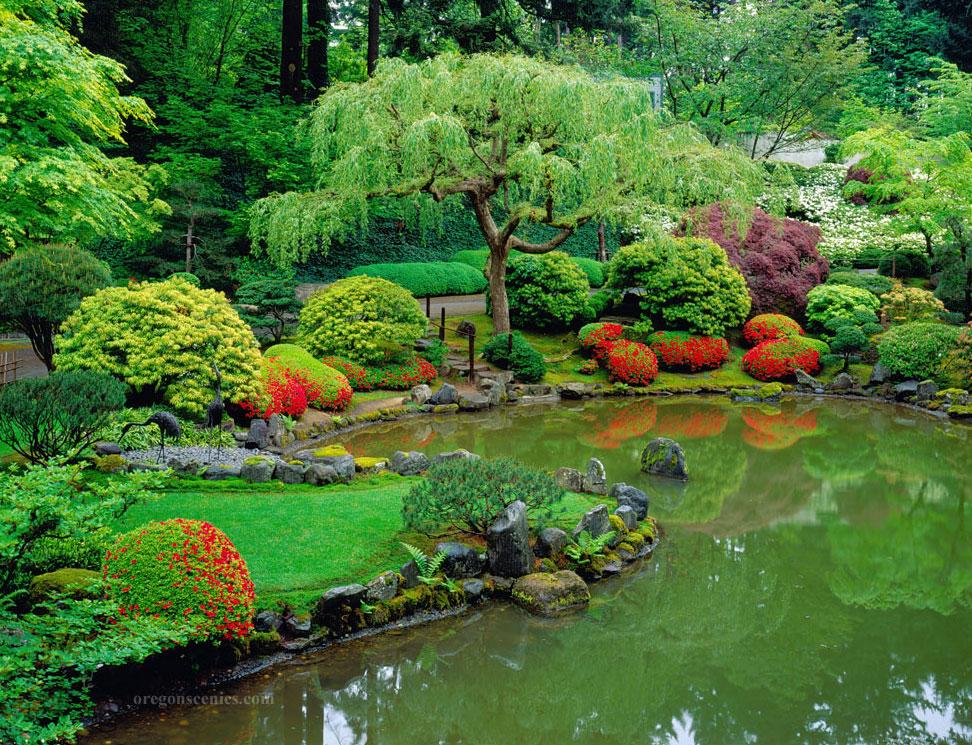 Foto del laghetto da giardino n.16