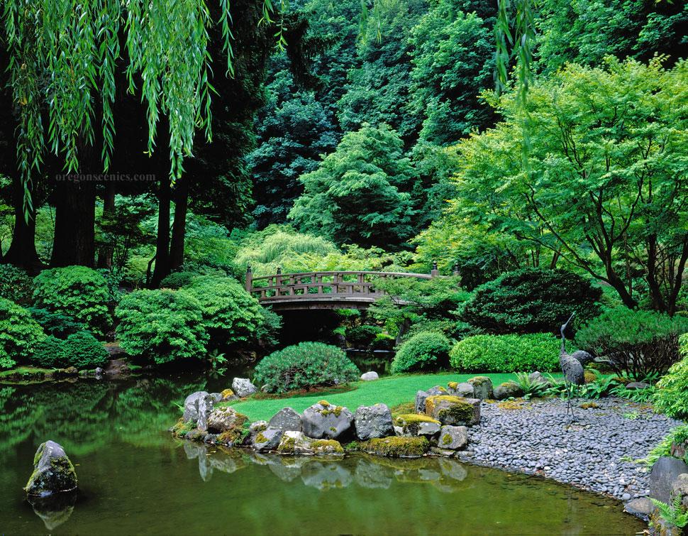 Foto del laghetto da giardino n.17