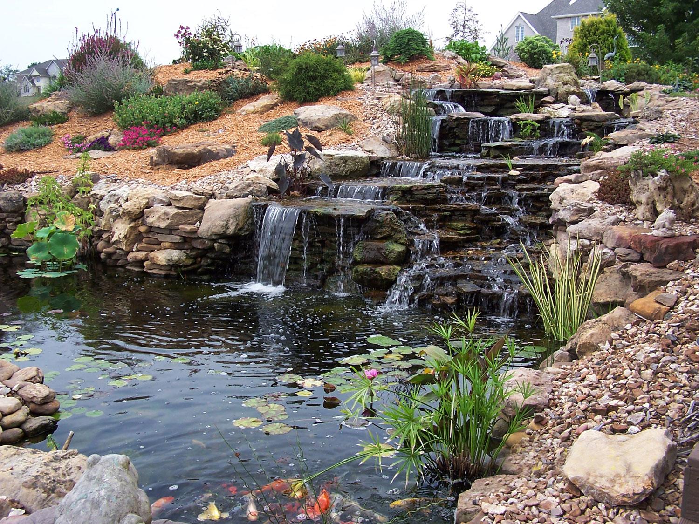Foto del laghetto da giardino n.21
