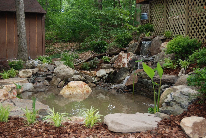Foto del laghetto da giardino n.23