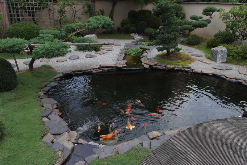 Foto del laghetto da giardino n.25