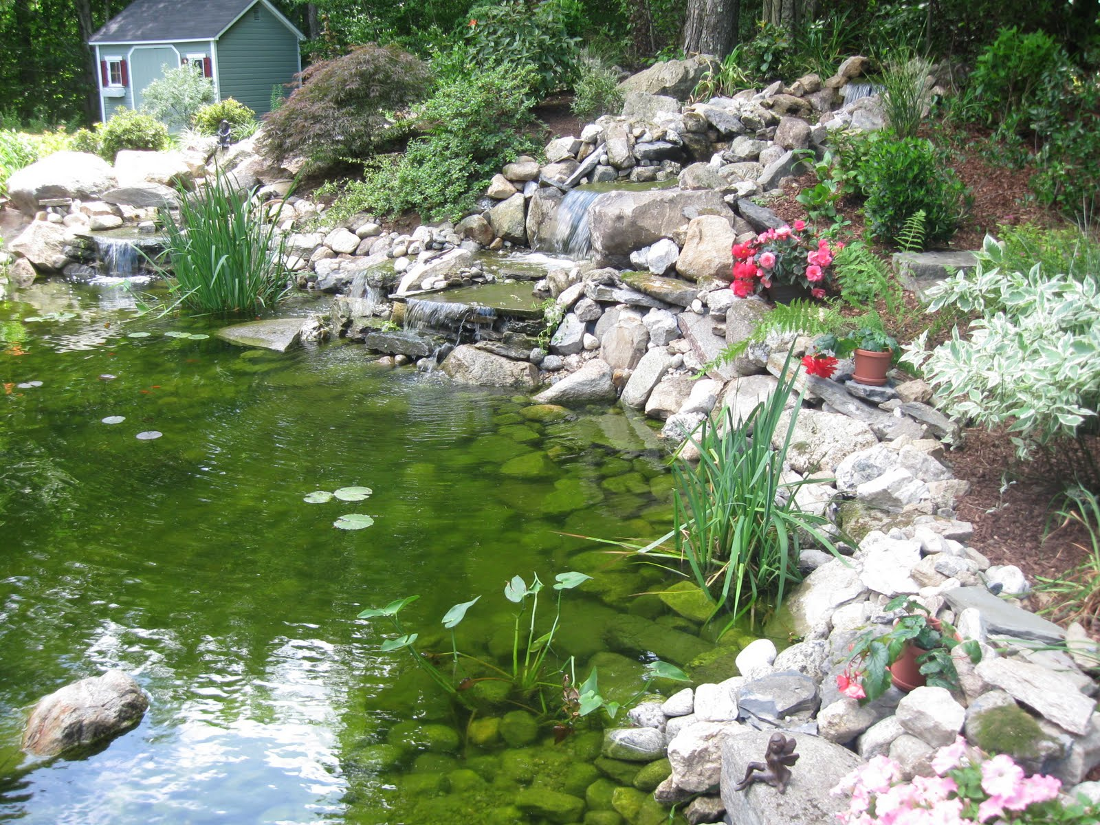 Foto del laghetto da giardino n.26