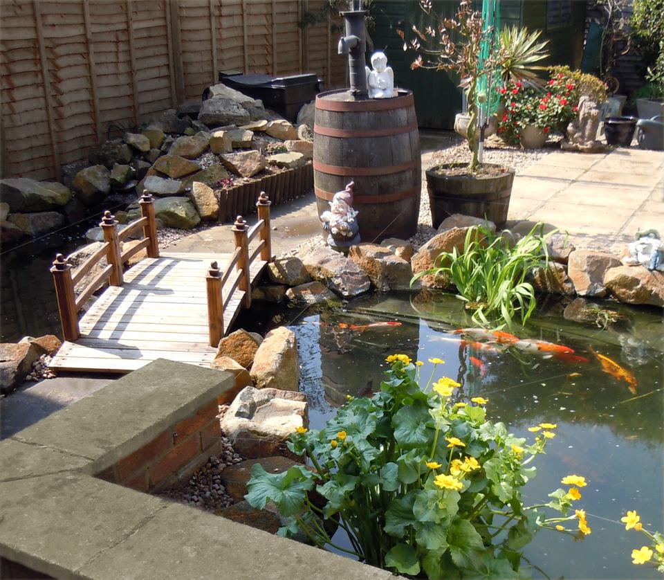 Foto del laghetto da giardino n.28