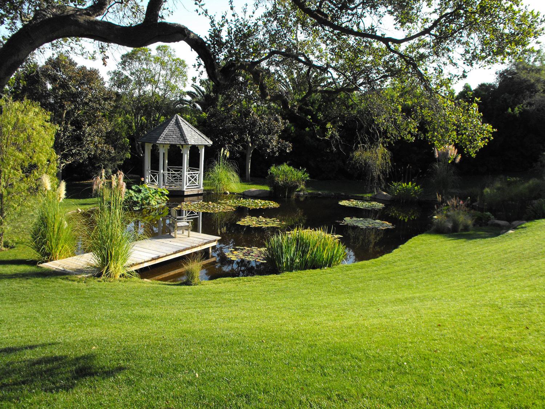 Foto del laghetto da giardino n.33
