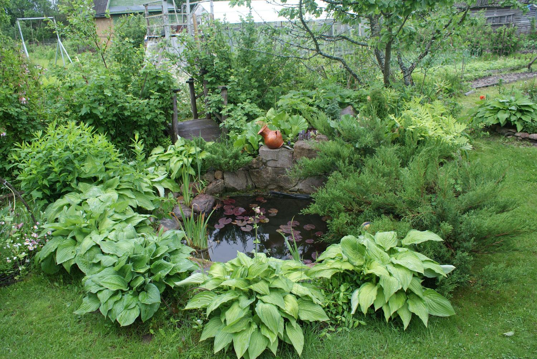Foto del laghetto da giardino n.34