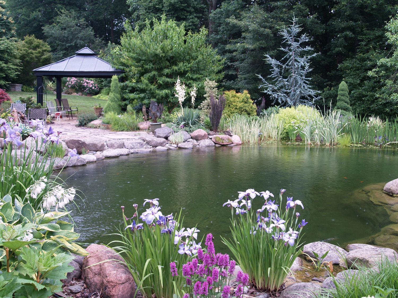 Foto del laghetto da giardino n.36