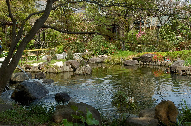 Foto del laghetto da giardino n.38