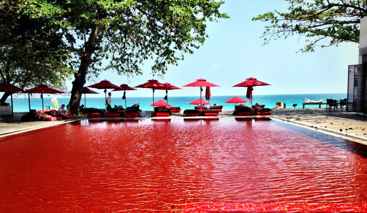 Foto della piscina del resort The Library in Thailandia