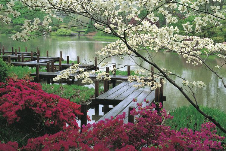 Foto del giardino zen in stile giapponese n.08