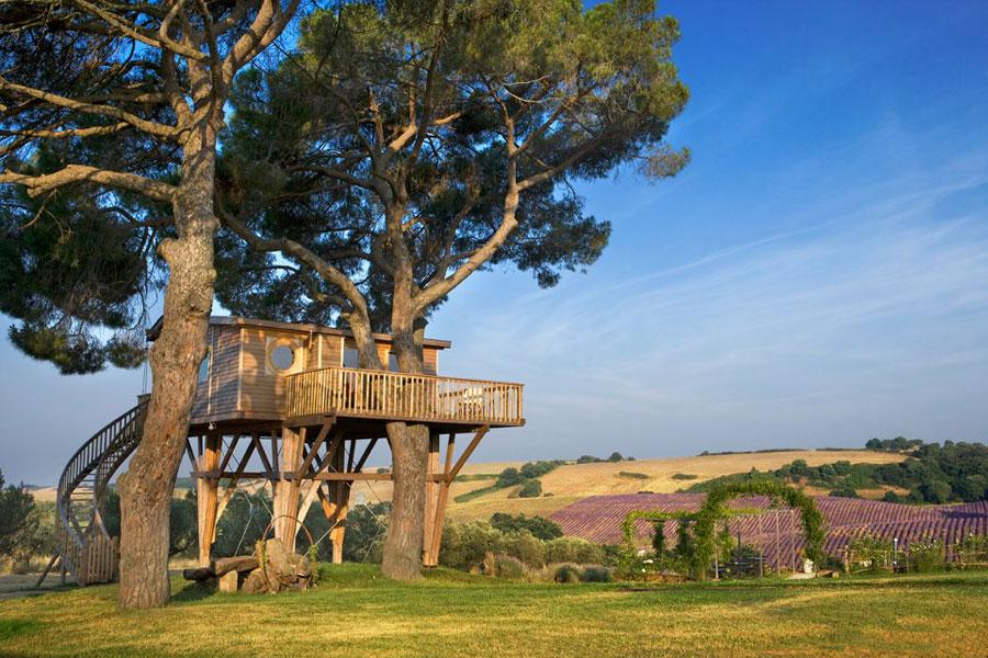 Foto della casa sull'albero dell'agriturismo La Piantata in Italia