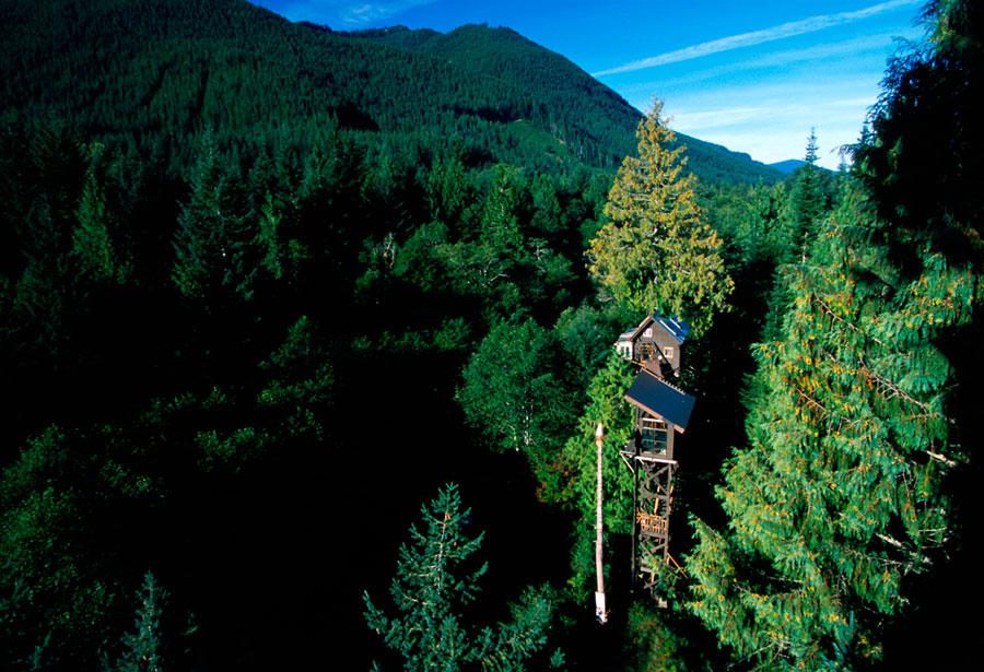Foto dell'hotel Cedar Creek Treehouse negli Usa