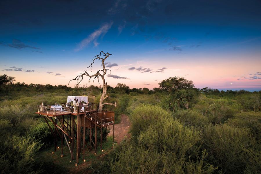 Foto dell'hotel Chalkley Treehouse in Sudafrica