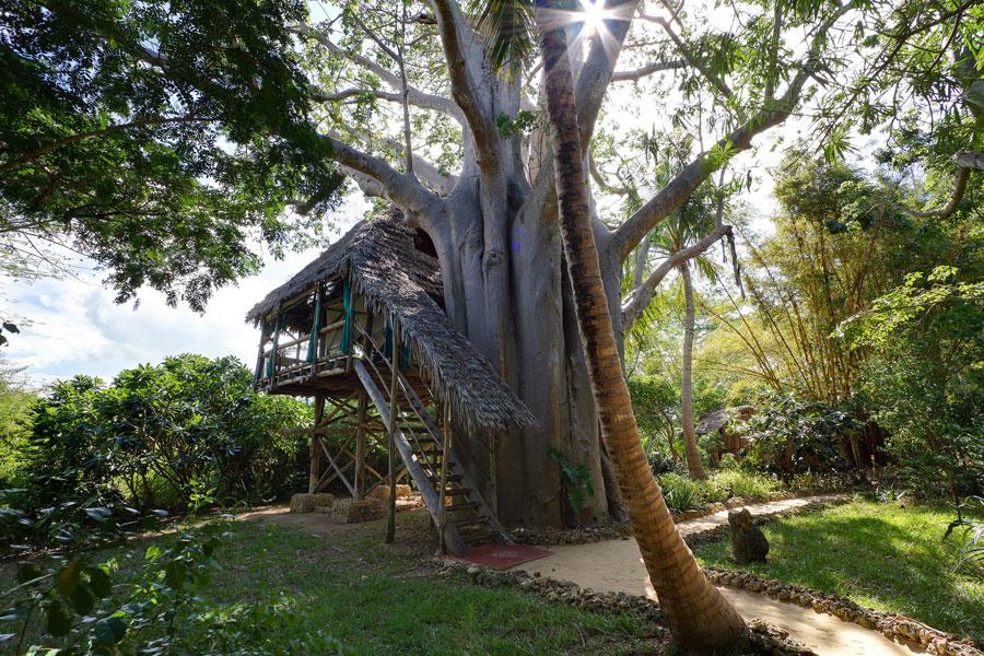 Foto dell'hotel sugli alberi Chole Mjini Lodge in Tanzania