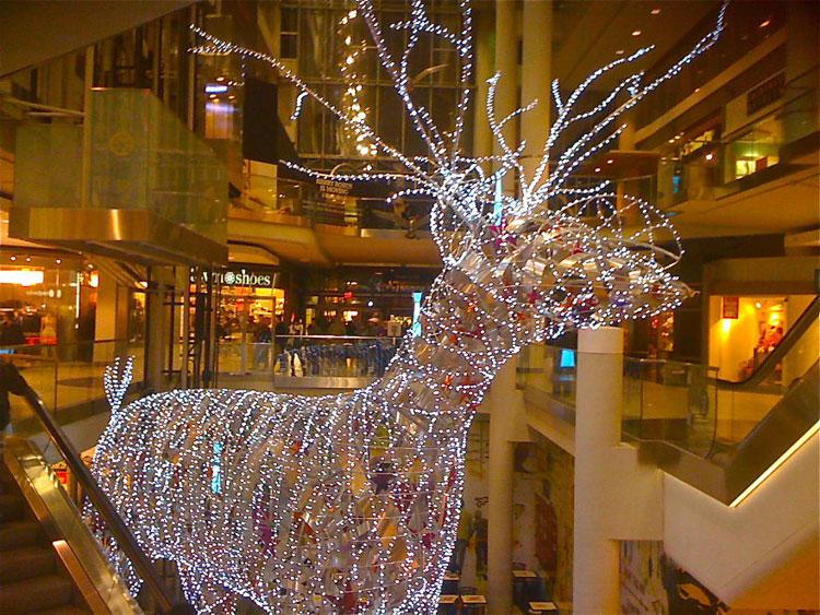 Foto delle luci natalizie di Toronto in Canada