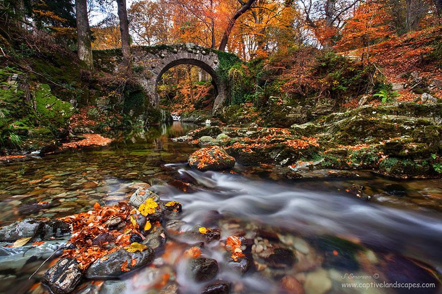Foto del ponte di Tollymore in Irlanda del Nord