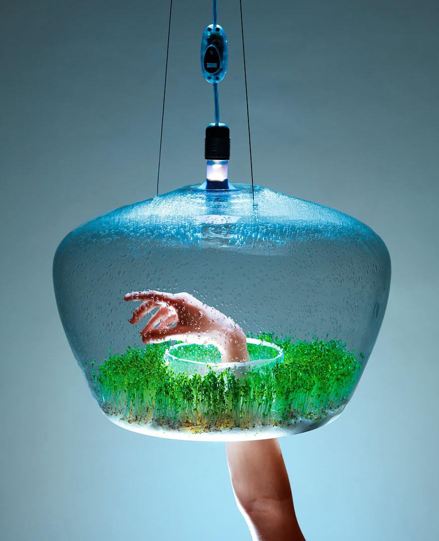 Foto del lampadario con serra incorporata n.01