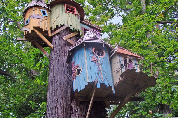 Casa sull'albero per bambini n.17