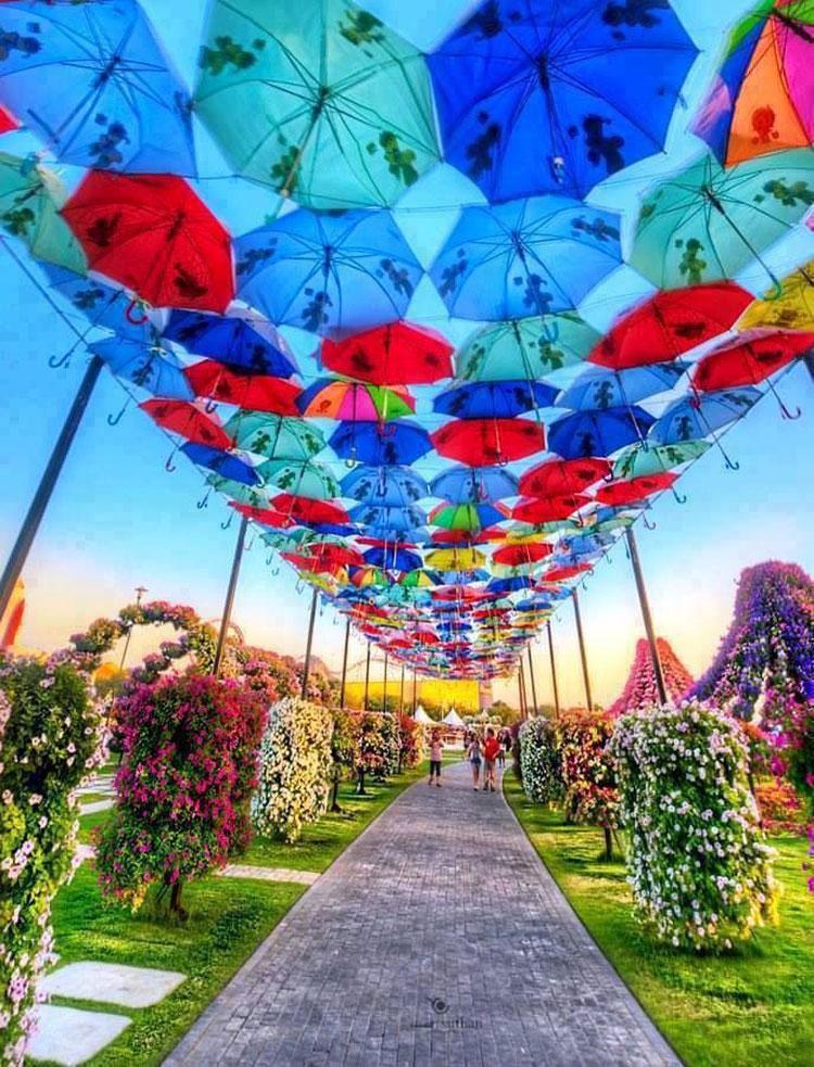 Installazioni di arte urbana con ombrelli colorati n.12