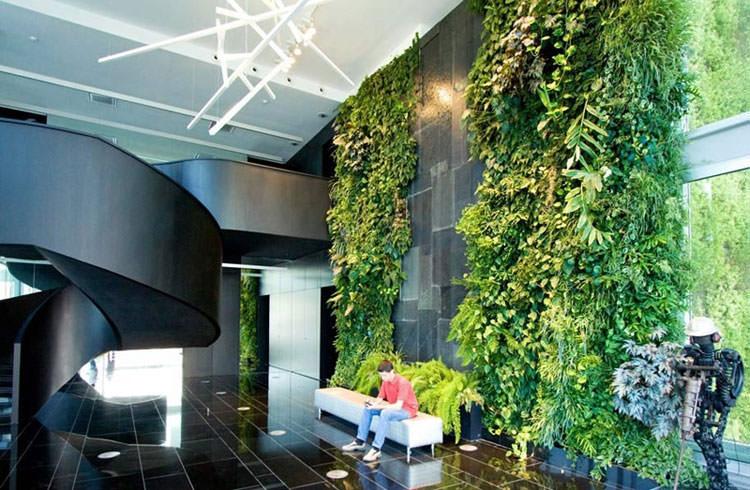 Parete rivestita di vegetazione per creare giardini interni