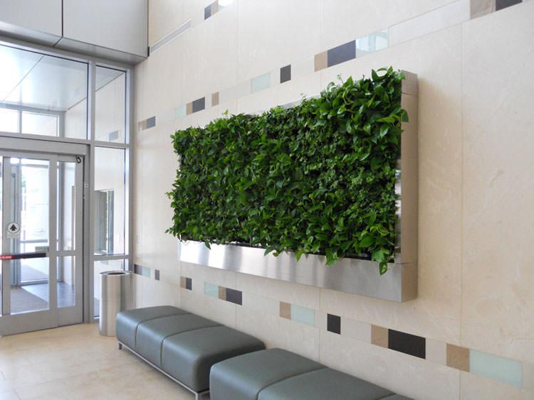 Parete green a forma di quadro per creare giardini interni