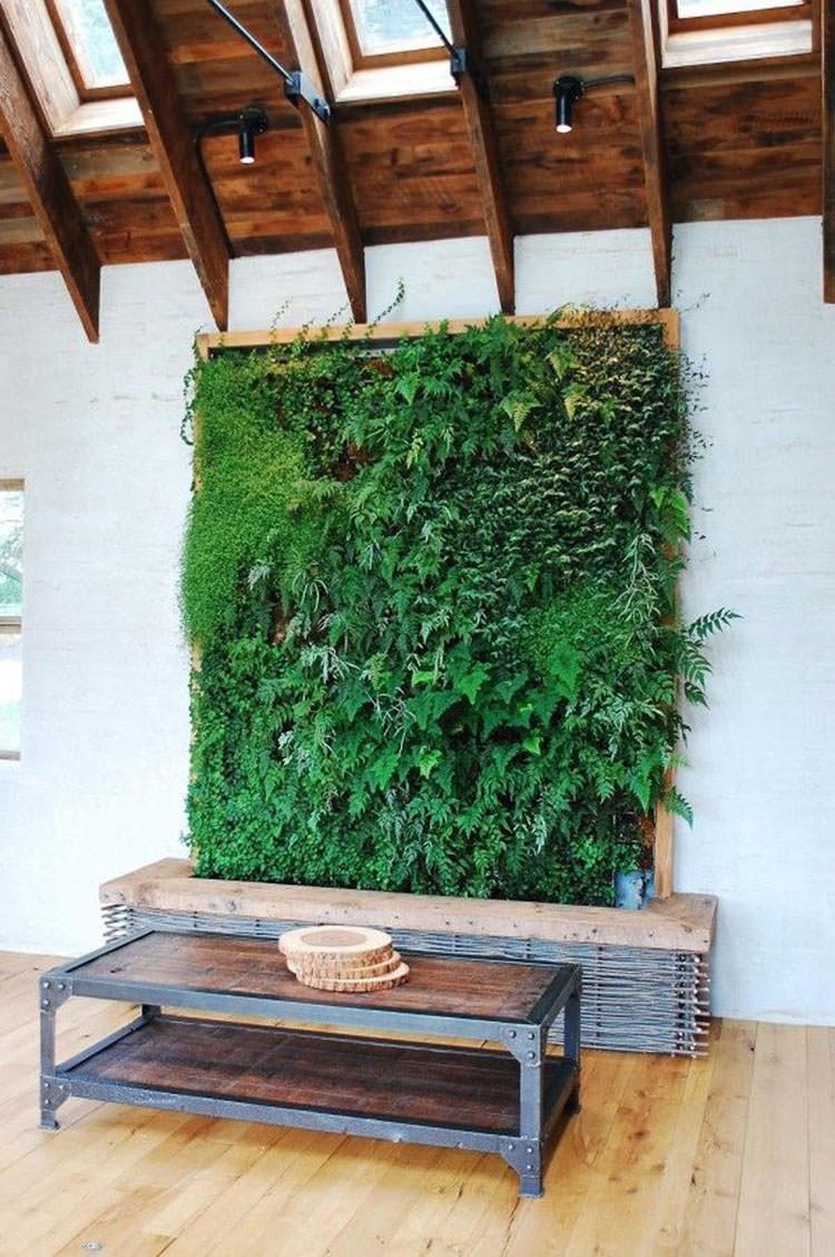 Idee per la creazione di giardini interni n.23