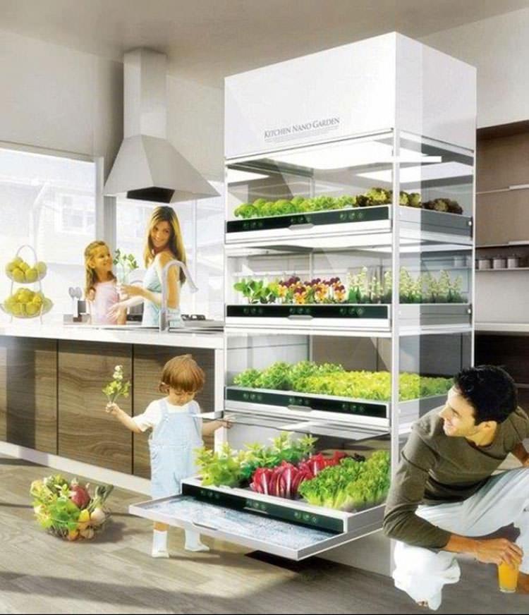 Idee per la creazione di giardini interni n.27