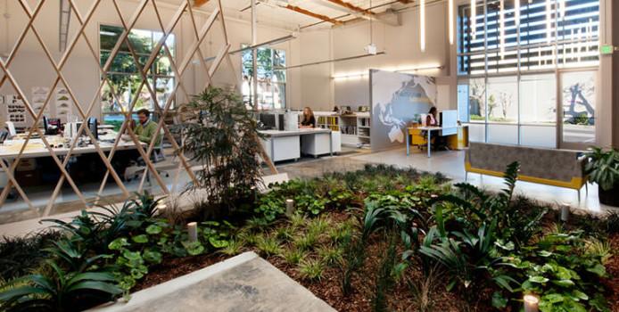 Giardini Interni: 35 Idee per una Casa Più Green