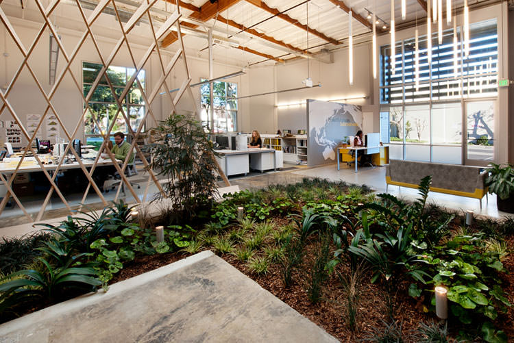 Giardini interni 35 idee per una casa pi green for Piccoli piani di casa urbana