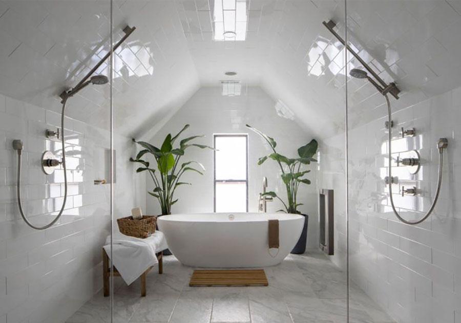Idee per arredare il bagno con le piante n.03
