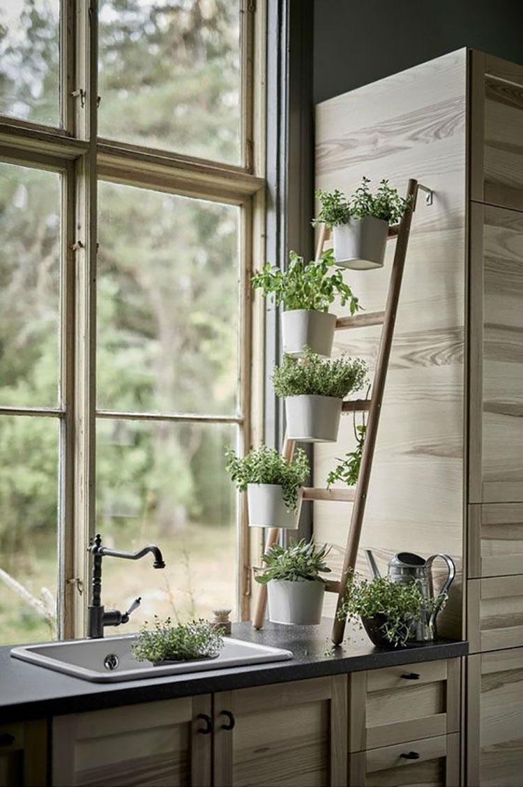 Idee per arredare la cucina con le piante n.05