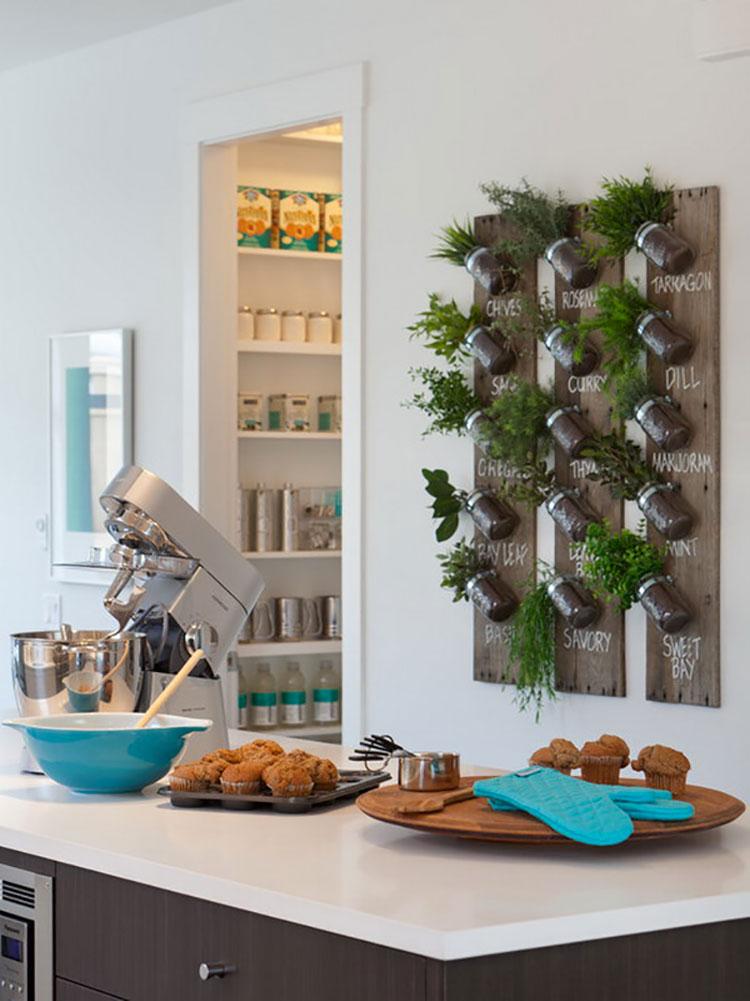 Idee per arredare la cucina con le piante n.06