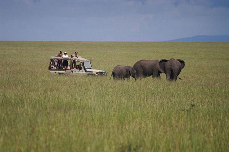 Foto del Naibor Camp Resort in Kenya n.01