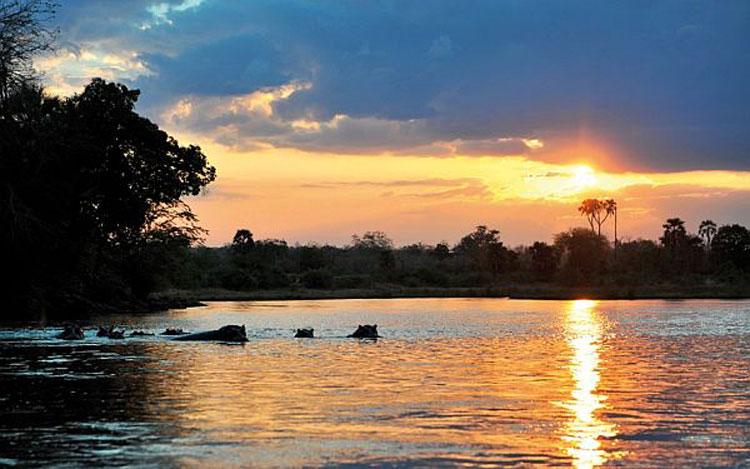 Foto The Retreat Resort in Tanzania n.01