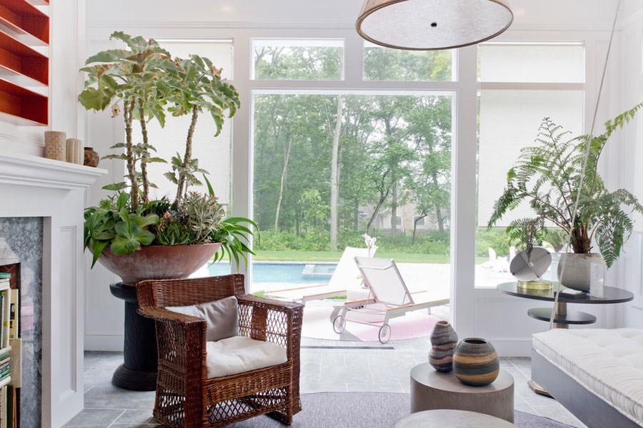 Arredare il salotto con piante da interno n.02