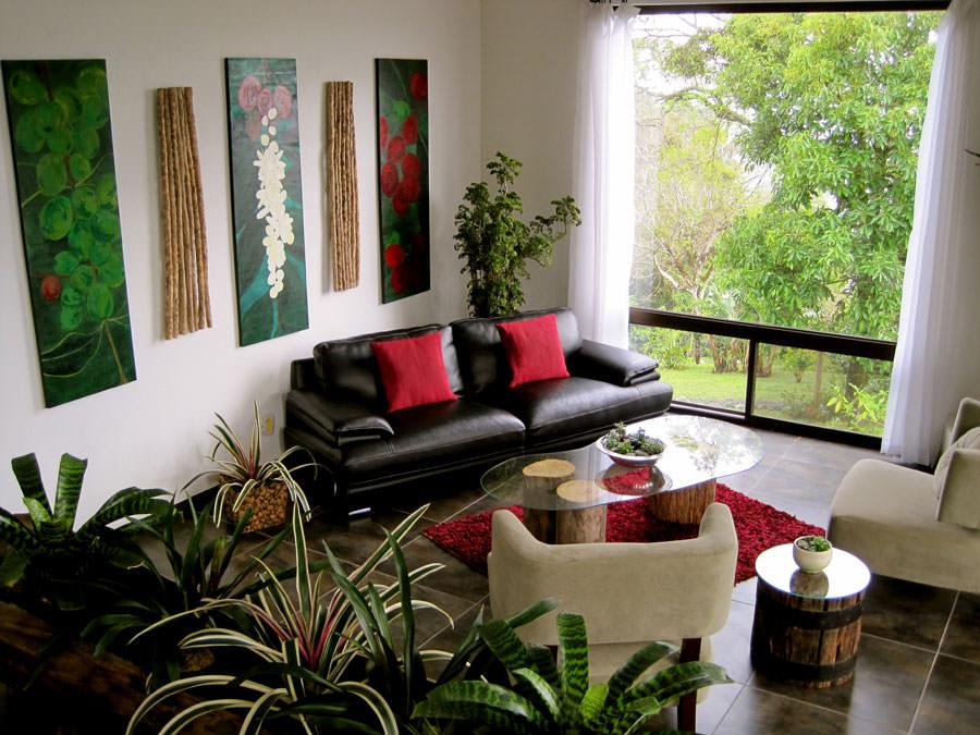 Arredare il salotto con piante da interno n.03