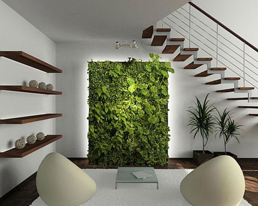 Arredare il salotto con piante da interno n.04