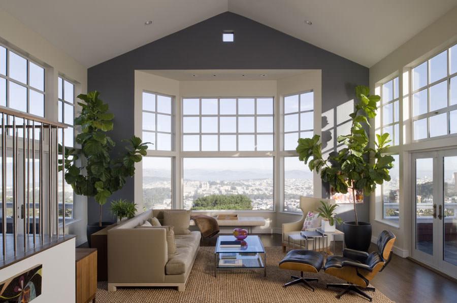 Arredare il salotto con piante da interno n.05