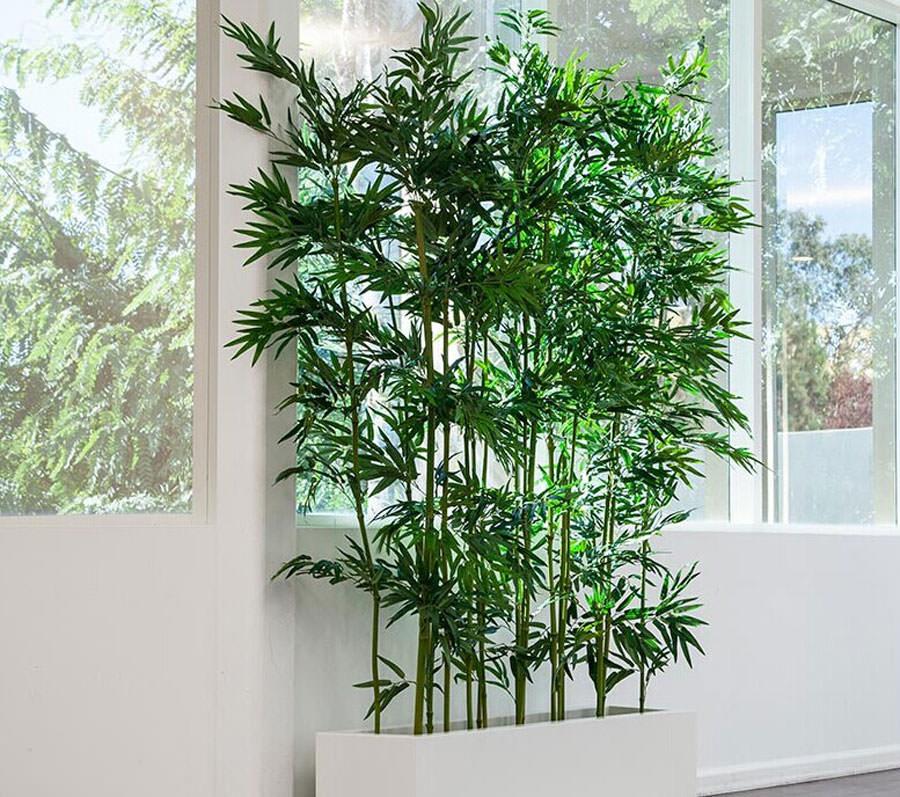 Arredare il salotto con piante da interno n.10