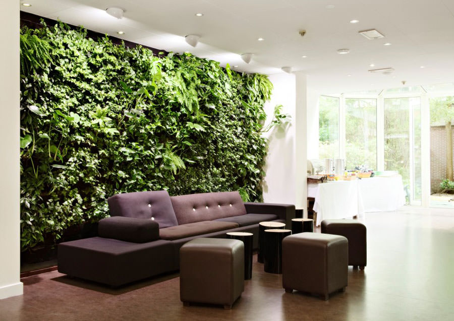 Idee per arredare il salotto con piante da interno - Pitture da interno ...