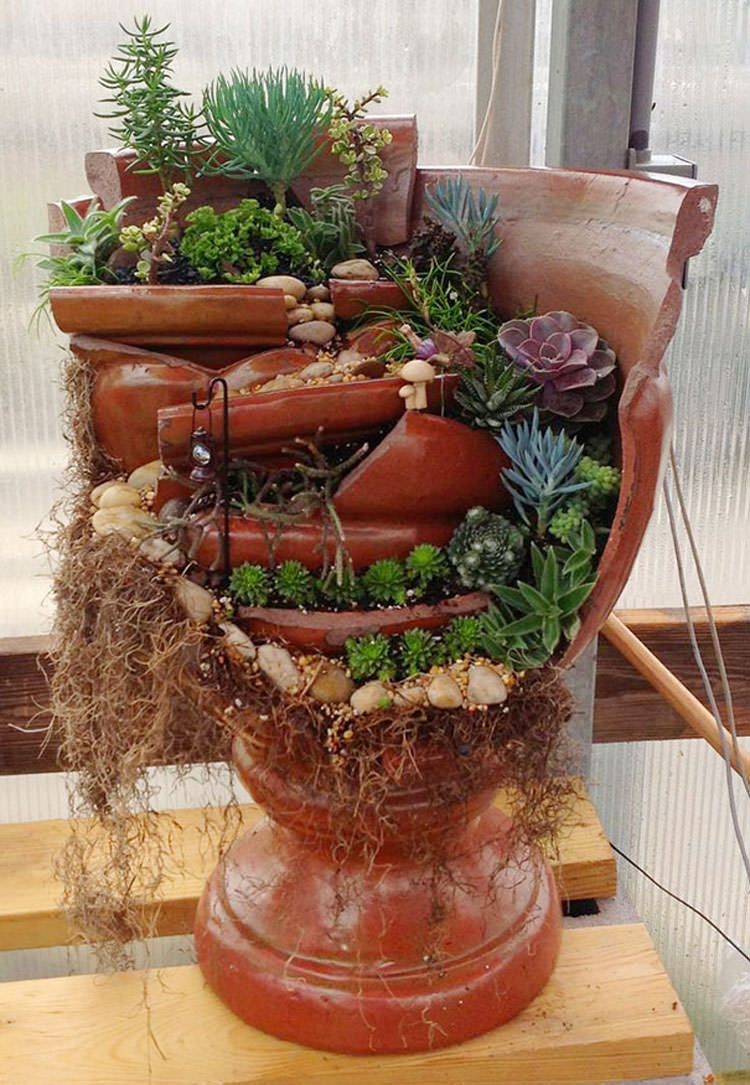 Giardino incantato ricavato da un vaso rotto n.10
